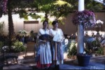 Participants at the Philadelphia Flower Show