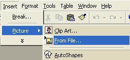 Inserting A Photo Using Microsoft Word