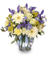 """""""Welcome Baby Boy"""" Bouquet With Statice"""