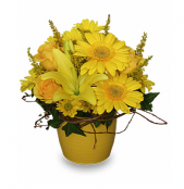 Yellow Aglow - Garden Party Centerpiece