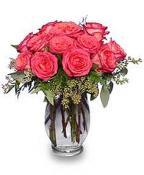 Coral Roses - Desire