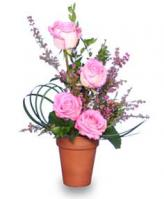 """Grace Under Pressure"" Pink Roses Bouquet"