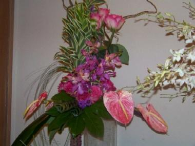 Flower Arrangement with a Tropical Flare