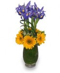 """""""Fashionable Father's Day Bouquet"""""""
