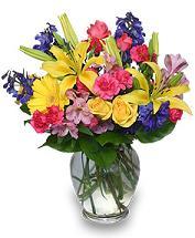 Rainbow of Blooms Arrangement