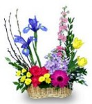"""Colorful Border"" Easter Flowers"