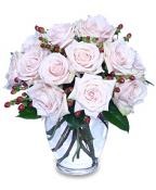 Pale Pink Roses - Modesty