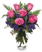 Pink Roses - Thankfulness, Perfect Happiness