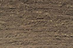 Picture of Soil