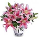 """Stunning Stargazers"" Arrangement of Lilies"