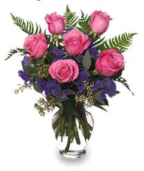Libra Flowers - Pink Roses