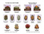 Funeral Flower Selection Guide