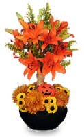 Spice Up Fall Decor With Festive Fruits