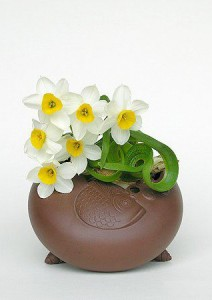 Carved Bulb Narcissus