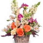 """""""Fresh Breeze"""" Flower Basket--The perfect gift for mom!"""