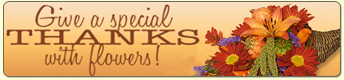 Send Thanksgiving Flowers
