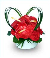 Velentine Arrangement with Anthurium