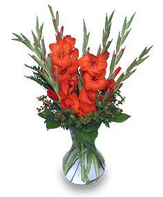 Arrangement Galdiolus Birthday Bouquet