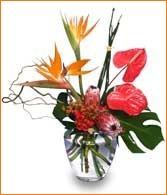 beautifult vases arrangment containing Bird of Paradise