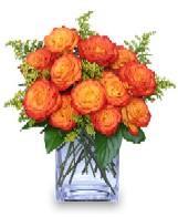 Sqaure vase of orange roses with goldenrod & leather leaf - meaning desire, enthusiasm
