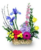 Photo of a mixed basket arrangement with bright spring colors