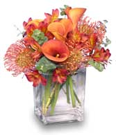Fresh Flower Arrangement With Orange Calla Lillies