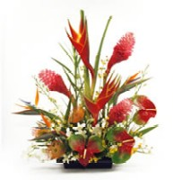 Tropical Flower Arrangment Deisgned By Aloha Island