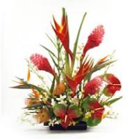 Tropical Flower Arrangment Deisgned By Aloha Island