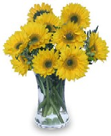 Sunflower Arrangement Perfect Gift For A Leo