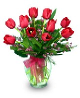 Red Tulips in A Vase Great Fro Zodiac Sign Aries