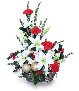 Traditional Christmas Holly