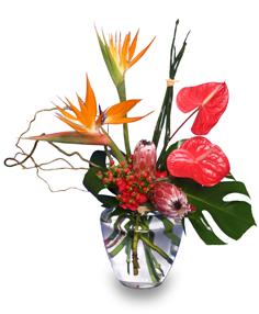 Tropical Flower Centerpiece