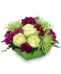 """""""Touch of Class"""" Mothers Day Flowers"""