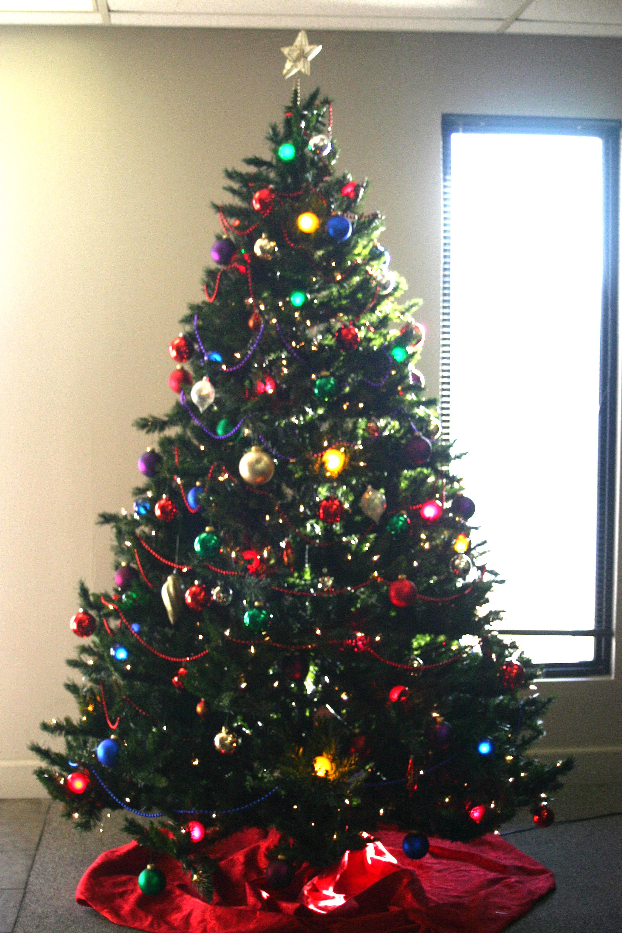 Biggest Christmas Tree