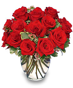 Red & White Roses Represent Unity