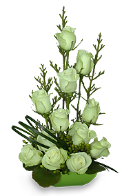 Green Roses for June Birthday
