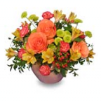 Send Get Well Flowers From A Local Florist