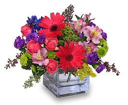 Send Wife Flowers