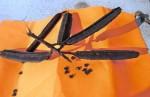 Seeds & Seed Pod of Cassia alata