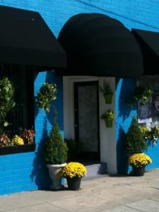 Modern Flower Shop