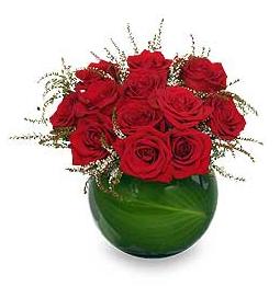 Spellbound Rose Arrangement