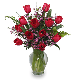 Valentines Day Tulips With Ferns