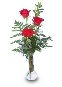 Red Rose Bud Vase
