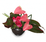 Anthurium and Roses Valentine's Day Arrangement