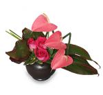 Anthurium and Roses Valentine's Day Arrangement