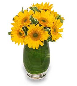 Cheery Get Well Flowers