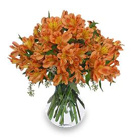 Garnet Color Flower Arrangement For January Birthdays