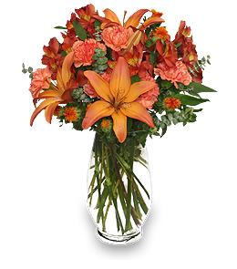 January Birthday Flowers - Garnet Color