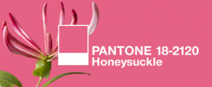 Pantone Color of the Year — Honeysuckle Pink