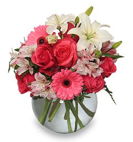 Mixed Pink Flowers Echo Pantones Honeysuckle Pink Color of the Year